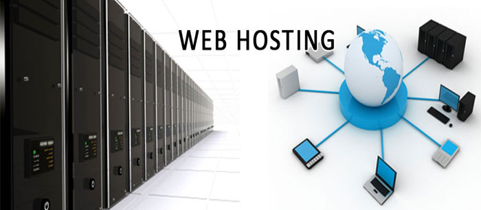 All websites hosted with ComNet IT Solutions Inc. have dedicated bandwidth set aside for their usage.